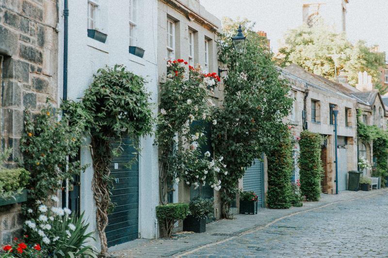 maisons façades fleurs plantes