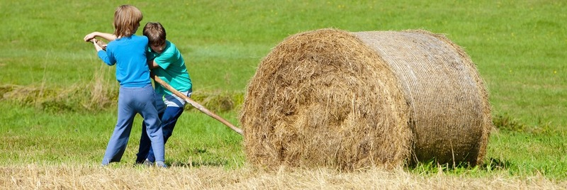 Boys Moving Bale of Hay with Stick as a Lever