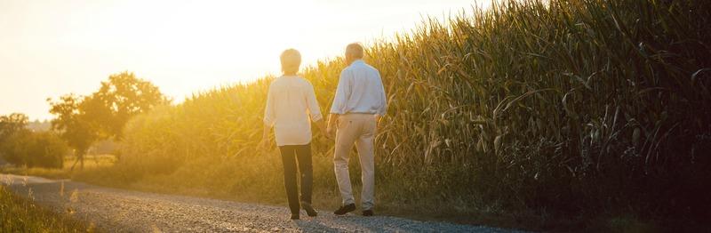 Senior woman and man having a walk along a field