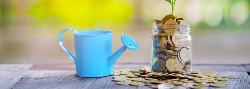Plant and coins in watering can using as financial growth and business investment concept