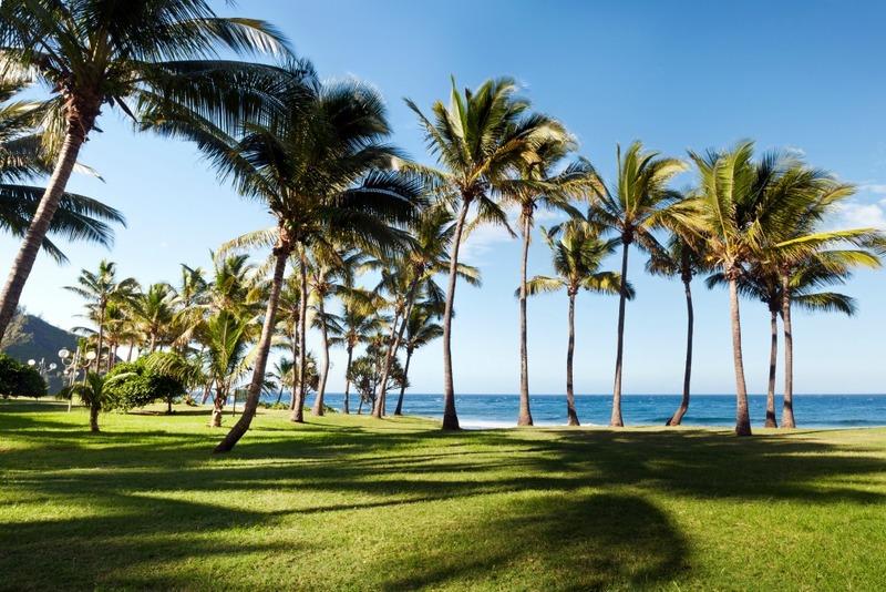 Plage de Grande-Anse - Ile de La Réunion