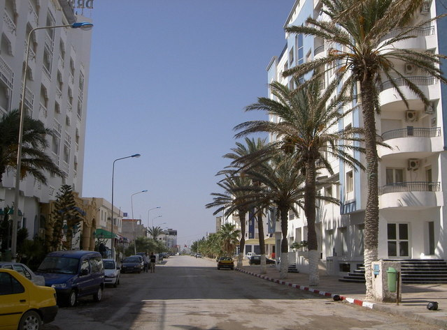 Rue ensoleillée avec des palmiers la bordant
