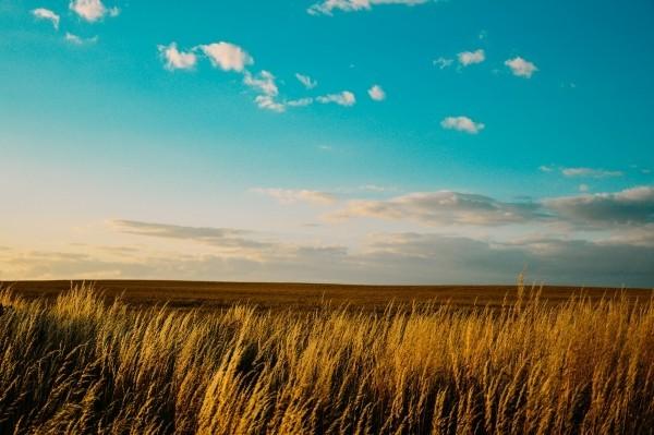 terres agricoles et taxe foncière
