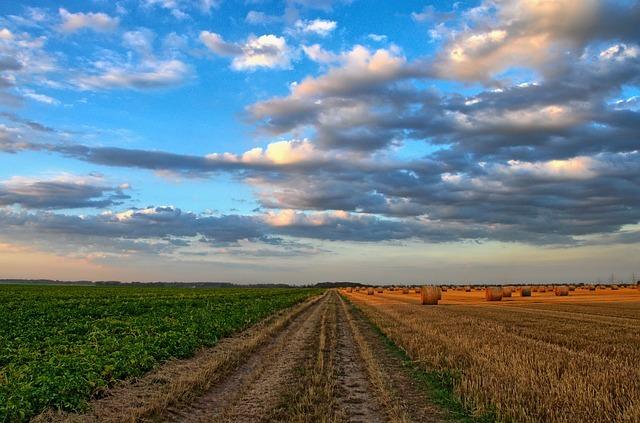 taxe pour frais de chambre d'agriculture