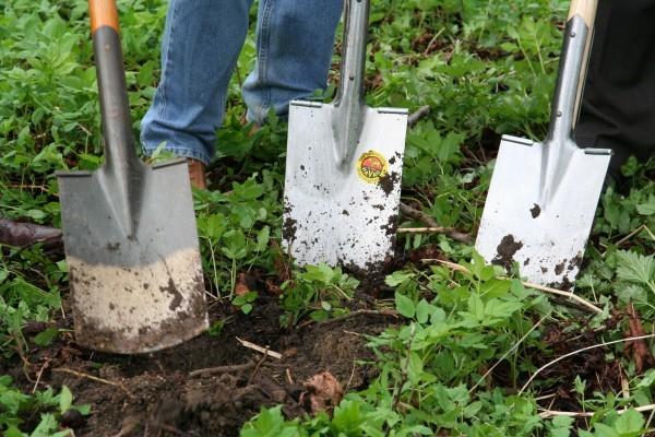 jardinier crédit d'impôt