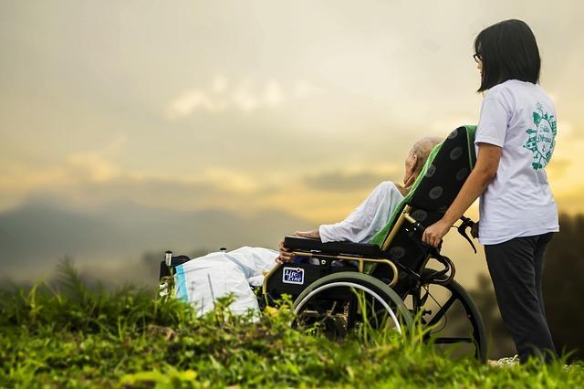 cesu plafond invalidité
