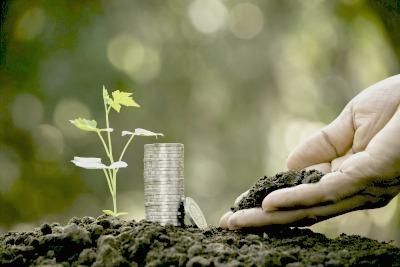 livret de développement durable banque postale