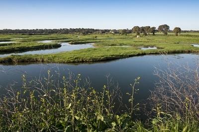 taxe foncière non bâti plan d'eau