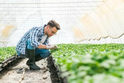 retraite salariés agricoles